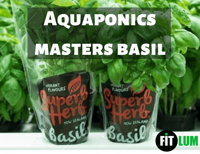 Freeze Dried & Smoked Herbs – Aquaponics Masters